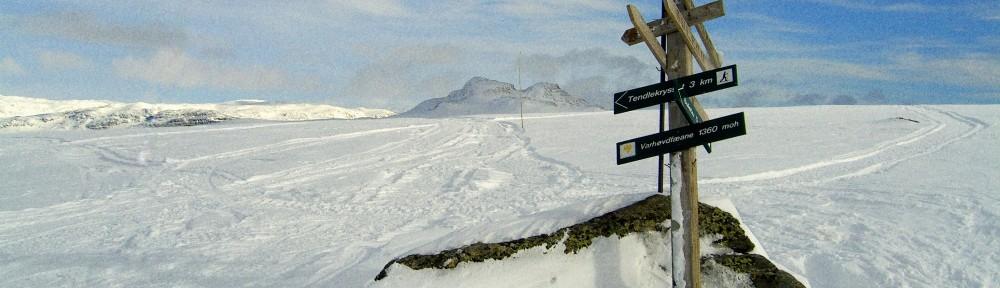 Tyin-Filefjell Turløyper